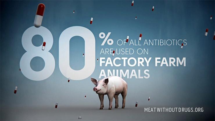 antibiotikumokkal-tomott-husok-8e59cfd25d Az élelmiszeripar valóban globális szinten mérgezi az embereket?