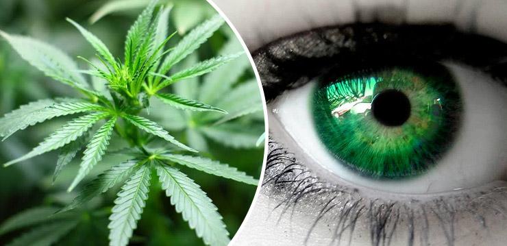 a különféle betegségek hatása a látásra)