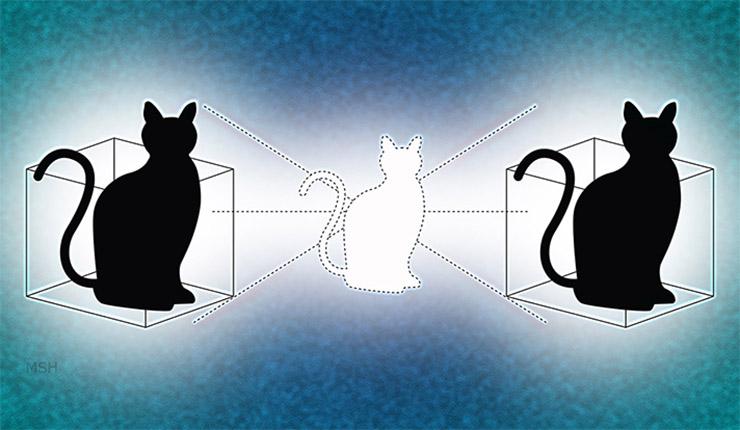schrodinger-macskaja-2-0a22ddcd9f Schrödinger macskájának bizarr gondolatkísérlete
