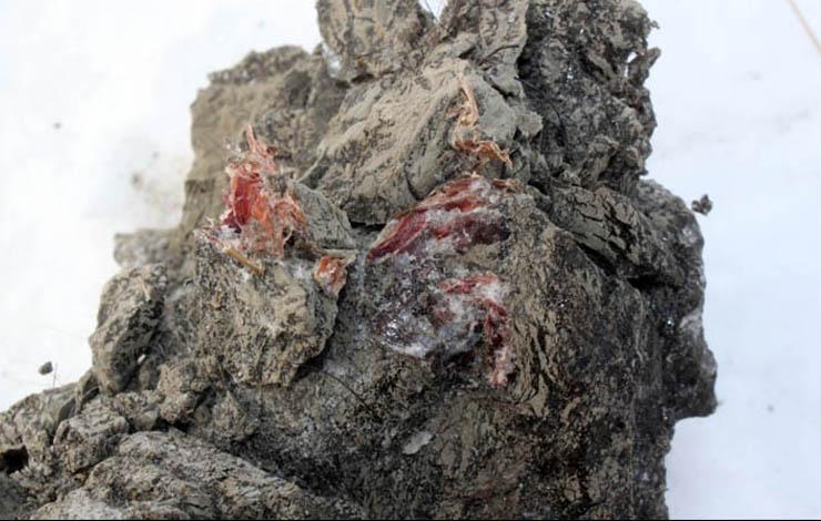 mamut-tetem-2