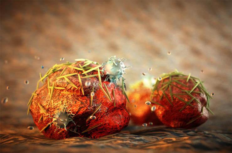 rak-sejtek