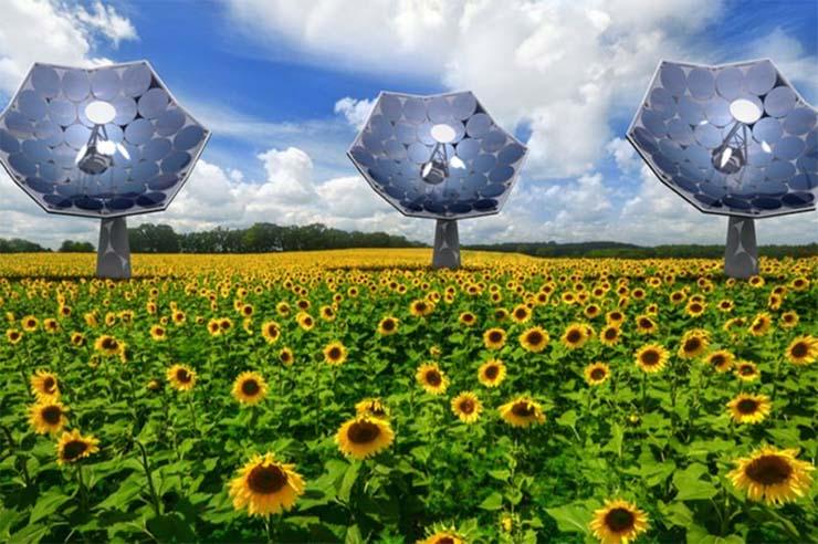 ibm-napenergia-viz