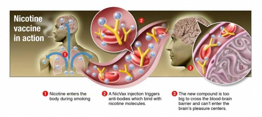 nikotin-vakcina