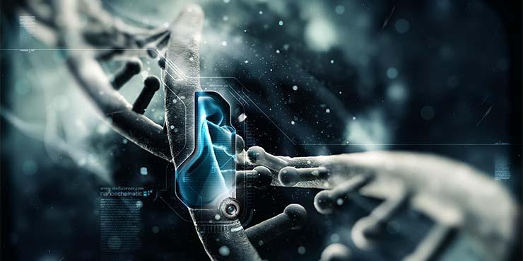 dns-nanotechnologia