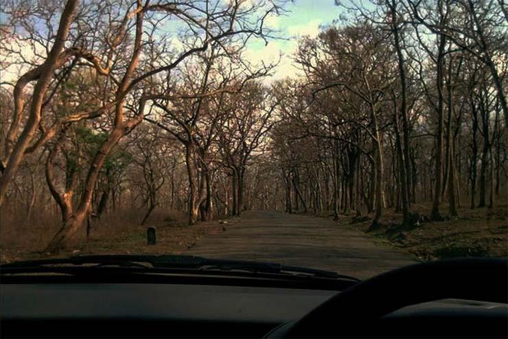 sathyamangalam-erdo-melletti-ut