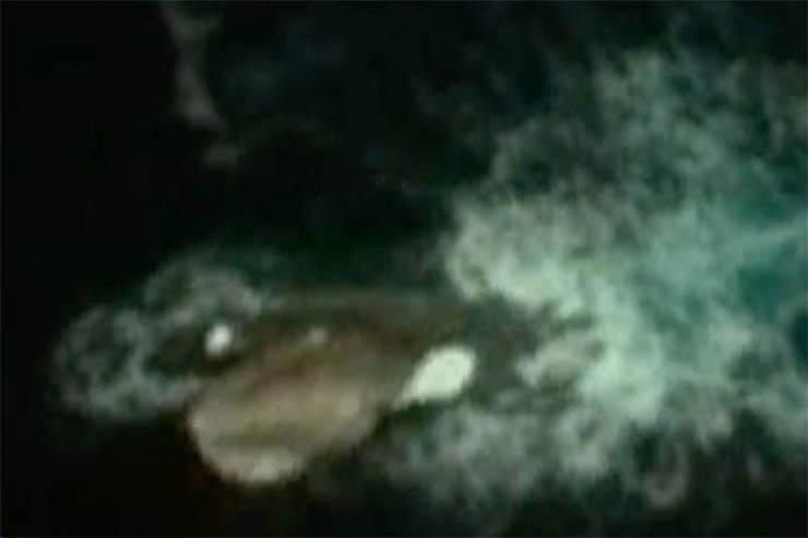 antarktisz-ufo-3