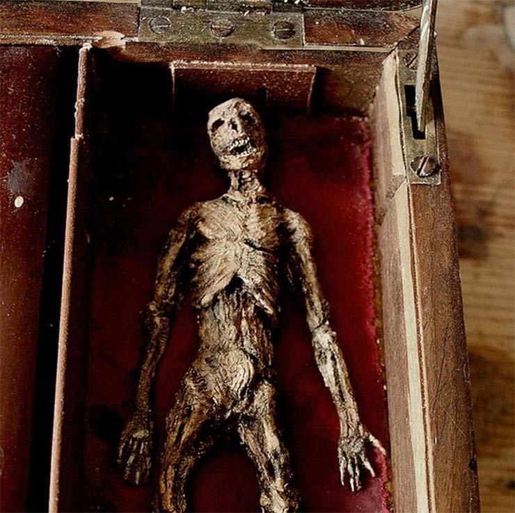 apro-leny-mumiaja
