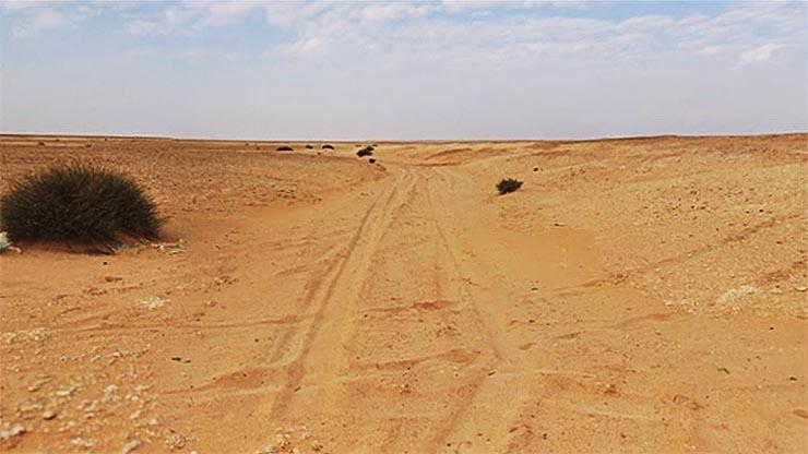 sivatagi-ut