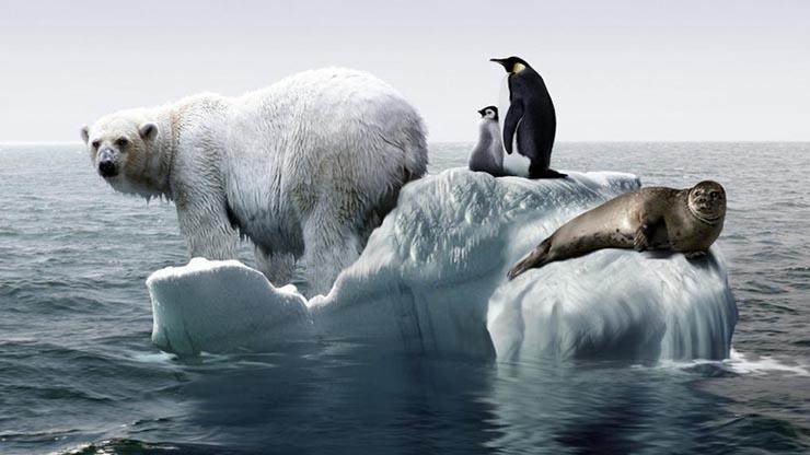 klimavaltozas-hatasai