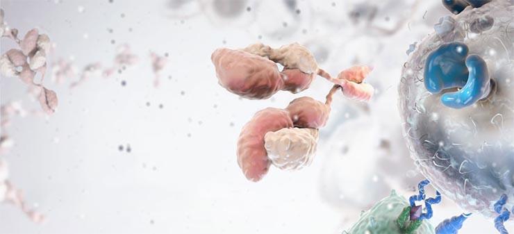 rak-immunterapia