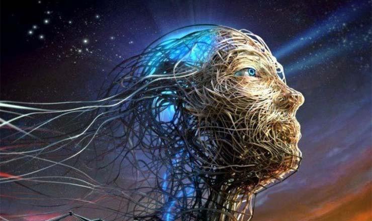 csodalatos-emberi-test