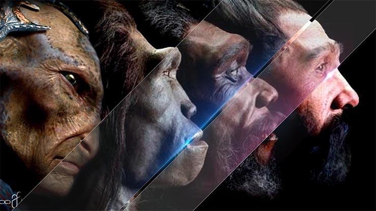 emberi-es-idegen-evolucio