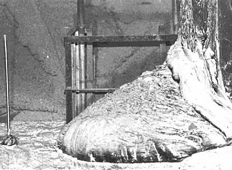 csernobil-reaktormag-olbvadeka