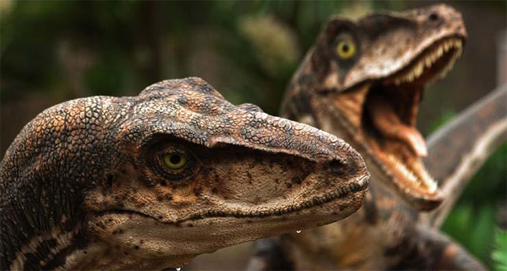 dinoszauruszok-3