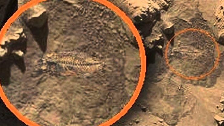 hal-fosszilia-mars