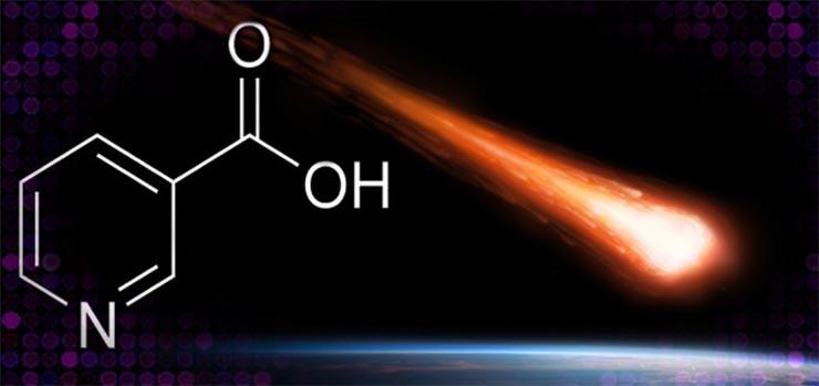 vitamin-b3-az-urbol