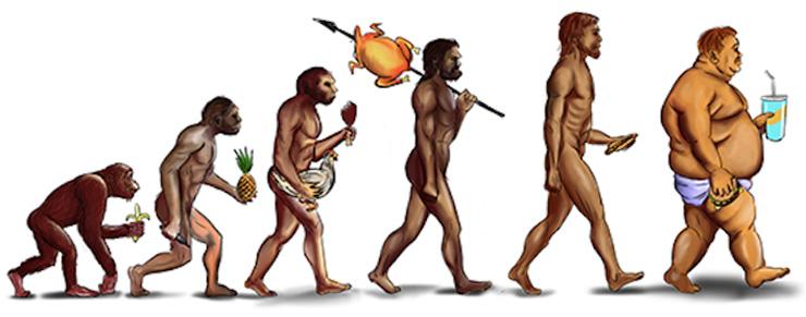 dieta-evolucio